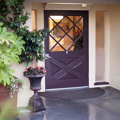 front door with green plants and potted flowers