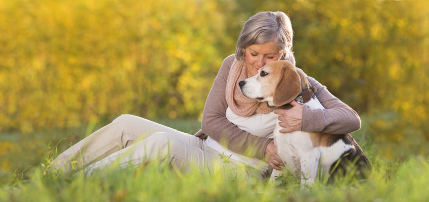 woman hugging beagle in meadow