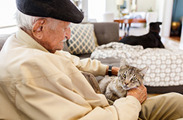 An elderly man sitting with a kitten in his lap