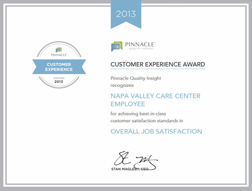 napa-pinnacle-award