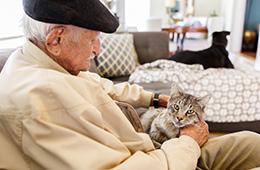 Al elderly man sitting with a kitten in his lap
