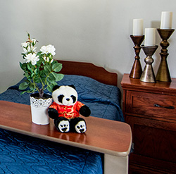 room ready for a new resident with fresh flowers and 'Pan Pan' the mascot
