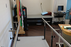 parallel therapy bars
