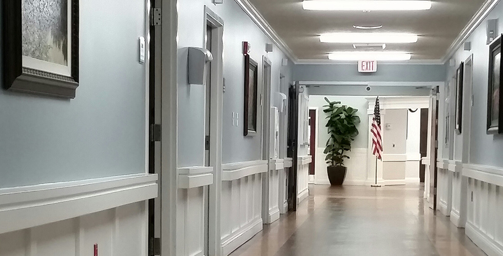 long clean hallway with a large fresh potted tree at the end of the hallway and the American flag on display