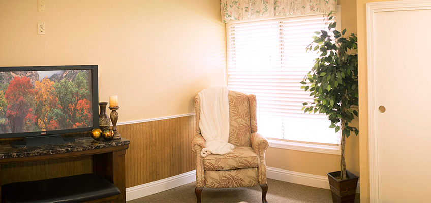 comfortable wing back chair with blanket in a light filled room