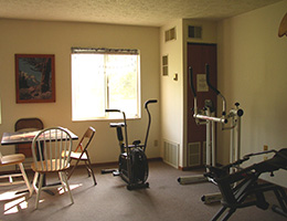 exercise area with various cardio equipment
