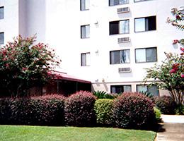 large playful bushes outside the facility