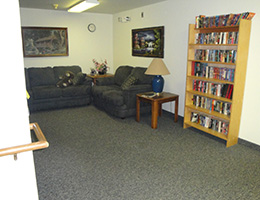 Pinewood Manor sofas and bookcases