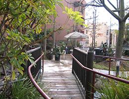 Sangnok wooden pathway