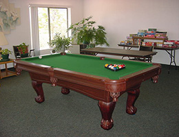 Verde View recreation room with a pool table