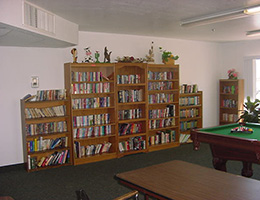 Verde View recreation room with books and a pool table