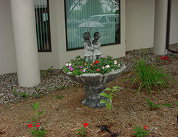 nice plants with a small stone statue of children