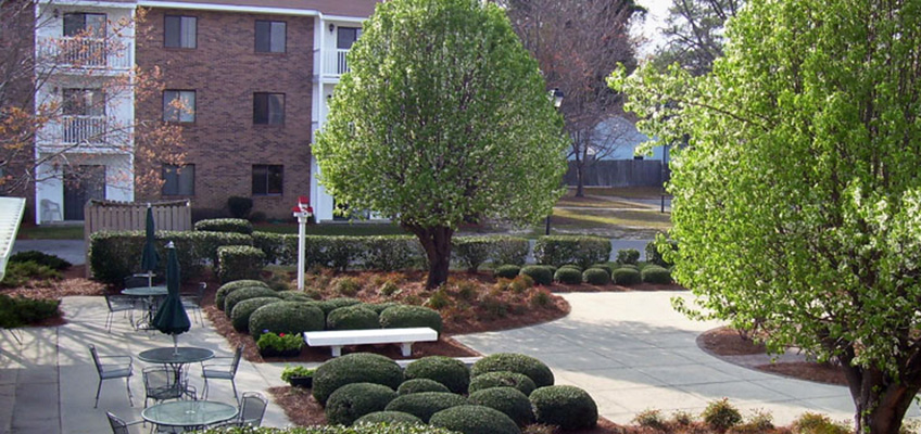 Outside seating surrounded by a walking path filled with shrubs and trees