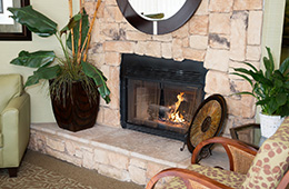 fireplace with a lit fire and plants sitting around it